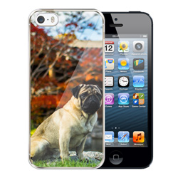Capinha de Celular Apple iPhone 5 - 10 unidades - 58x123mm em PS Transparente  - 4x0 - Sem Cobertura -  (cód. 19424)