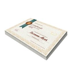 Certificados - 100 unidades - 210x297mm em Reciclato 240g - 4x0 - Sem Cobertura -  (cód. 3520)
